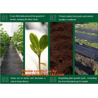 Quality Agricultural plastic ground cover weed mat, pp weed control mat, for greenhouse and outer use,ground cover, weed mat, ma for sale