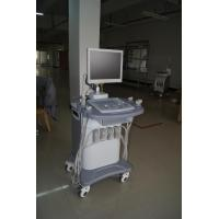 China Four Probes Portable Color Doppler with 15  LCD And WINDOWS XP on sale