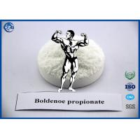 Quality Muscle Building Steroids Hormone Powder , 99% Purity Boldenone Propionate for sale