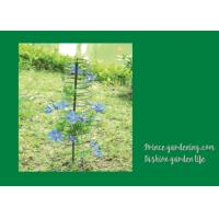 Quality Plant Support Hoops / Garden Spiral Plant Support Black Color For Flower Support for sale