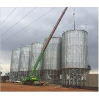 Quality Great volume popular TCK series hopper bottom galvanized steel rice paddy storage silo for sale