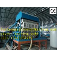 Quality Egg Tray Machine Production Line(FC-ZMG4-32) for sale