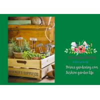 Quality Silver Rustproof Garden Landscape Staples With Zinc Coated Nameplates for sale