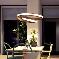 Quality Modern Drop down pendant lights For Indoor Home Lighting Fixtures (WH-AP-11) for sale
