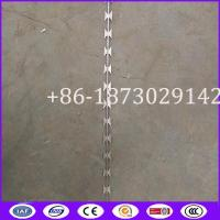 Quality Straight Concertina Razor Barbed Wire from China Supplier for sale