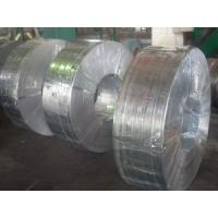 Grade 50, 490, SGC, Q195, SGCC, SGCD spangle Hot Dipped Galvanized Steel Strip / Strips