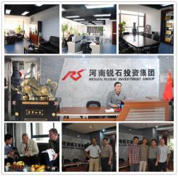 Henan Ruishi Investment Group Co.,Ltd
