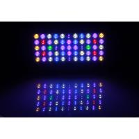 Quality Freshwater Reef Blue Led Aquarium Lights With Controller , Aquarium Led Plant Light for sale