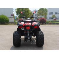 Quality Power 150CC Utility EEC ATV With Double Foot Pedal On The Beach for sale