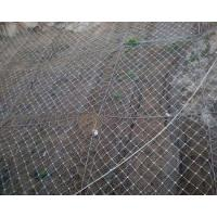 Quality Flexible Protection Wire Mesh , Stainless Steel Wire Mesh Netting For Slope for sale