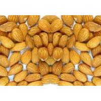Quality Almond Kernels for sale