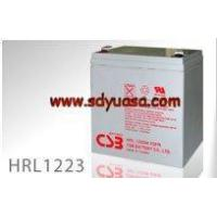 Quality CSB Battery HRL1223W for sale