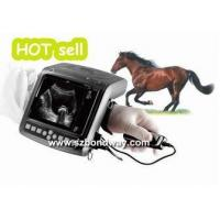 Veterinary Ultrasound Scanner Digital Wrist-top Veterinary Ultrasound Scanner(BW560V)