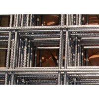 Quality Wire Mesh Reinforcement for sale