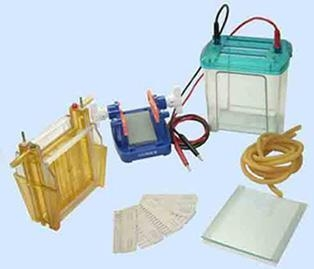 Buy Electrophoresis cell at wholesale prices