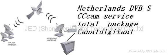 Buy Netherlands DVB-S CCcam service total package Canaldigitaal at wholesale prices