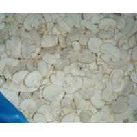 Quality IQF Mushrooms IQF Mushroom champignon slices for sale