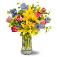 Buy cheap Spring Delight [TFWEB131] from wholesalers