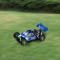 Buy cheap 1:10scale 4wd Nitro Power rc Buggy-swordfish from wholesalers