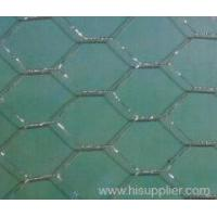Quality Hexagoanl Wire Mesh for sale