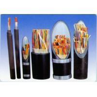 Quality Plastic insulated control cables for sale