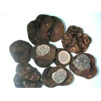 Quality FrozenMushroomSeries Frozen Truffles for sale