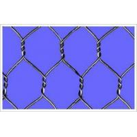 Hexagonal Wire Netting Hexagonal Wire Netting