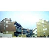 Quality Real Estate Projects Jinguang  Lvyin Xincun for sale