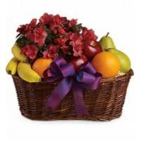 Buy cheap Fruits and Blooms Basket [T107-3A] from wholesalers