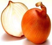 Buy Organic Onion at wholesale prices