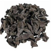 Quality Gansu excellent products Kang county black fungus for sale