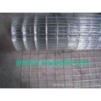 Quality Hot Dipped Galv Welded Wire Mesh for sale