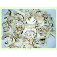 Quality Dried Mushroom Champignon Slice TC0302-2 for sale