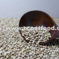 Quality Well selected Hulled hemp seed bird seeds for sale