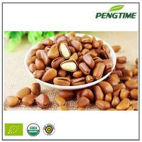 Quality Pine nuts for sale