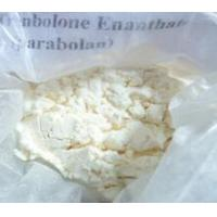 Quality Testosterones Enanthate for sale