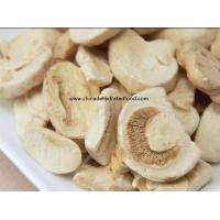 Quality Freeze Dried Mushroom for sale