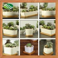 China Various Ceramic Succulent Pot With Bamboo Tray on sale