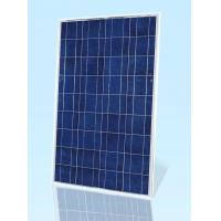 China poly solar panels NS-50P6 on sale