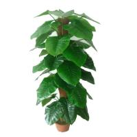China Item name: Fake real touch plastic leaf artificial Araceae plant bonsai on sale