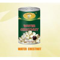 Quality WATER CHESTNUT for sale