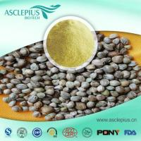 Quality Hemp Seed Protein Powder Supplier Wholesale for sale