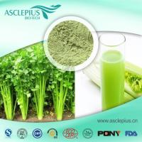 Quality Celery Extract Powder,celery Juice Powder Supplier Wholesale for sale