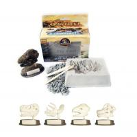 Toys & Hobbies Sml.Dino Skull with base Excavation Kit/Dig it Out Toys