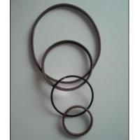 Oil seals for heavy vehicles Glyd ring