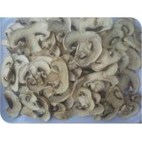 Quality Champignon for sale