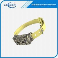 China Pet GPS Collar for Dogs Waterproof on sale