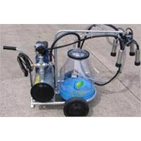 Quality Milking Machine for sale