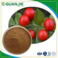 Quality Butcher's Broom P.E Ruscus Aculeatus Extract Hot Sale Ruscogenin Powder L Hot Sale And Sample Free for sale
