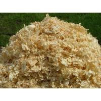 blog solution for Making Pine Sawdust into Wood Pellets